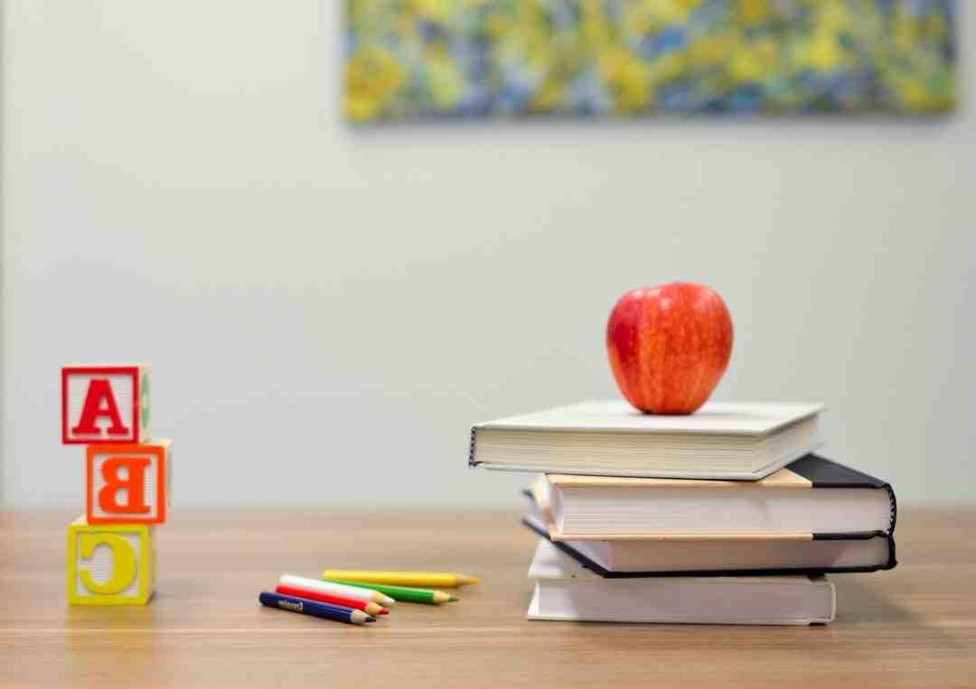 Combien de trimesre enfant education national
